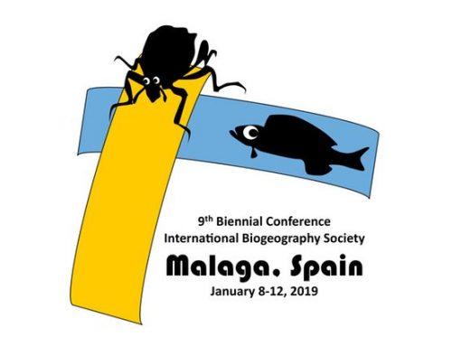 IBS Malaga 2019 – Logo Winner