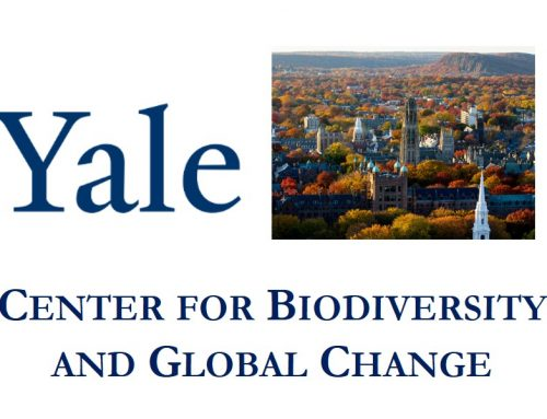 Postdocs in Global Biodiversity Science and Conservation